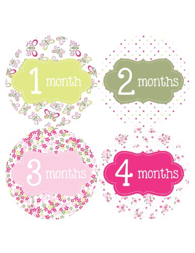 Months in Motion 036 Monthly Baby Stickers Baby Girl Months 1-12 Milestone