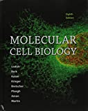 img - for Molecular Cell Biology & LaunchPad for Molecular Cell Biology (6 month access) book / textbook / text book