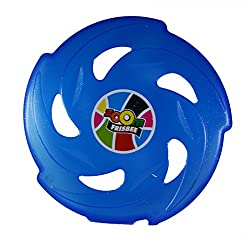 Sunny Blue Flying Disc