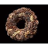 Exotic Creations Nature World - Dried flower wreath(Natural,L=40 cm X W=40 cm X D= 40 cm)