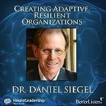 Creating Adaptive, Resilient Organizations | Daniel J. Siegel