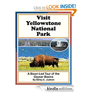 Visit Yellowstone National Park A Bison-Led Tour of the Geyser Basins (Nature and Wildlife Tours of Yellowstone National Park For Middle Grades Age 9 - 12)