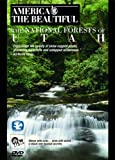 echange, troc America the Beautiful: National Forests of Utah [Import anglais]
