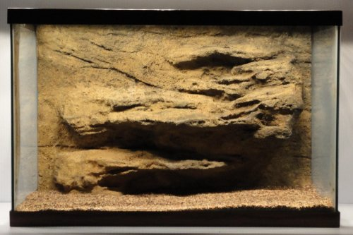 Universal Rocks 48-Inch by 20-Inch Ledge Flexible Aquarium Background (Bearded Dragon Tank compare prices)