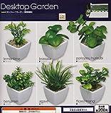 コロコレ デスクトップガーデン【観葉植物】 全6種セット ガチャガチャ