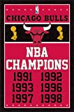 Chicago Bulls NBA Champions Sports Poster