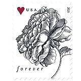 Vintage Rose Sheet of 20 USPS Forever Stamps