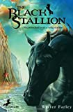 img - for The Black Stallion book / textbook / text book