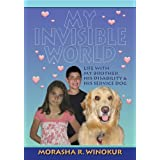 My Invisible World ~ Donnie Kanter Winokur