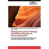 Madrigueras de la Tortuga del Bolsón (Gopherus flavomarginatus): Caracterización Ecológica en la Reserva de la...