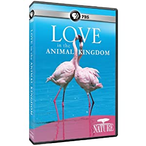 NATURE: Love in the Animal Kingdom [Import]