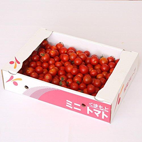 九州産 ミニトマト (ヘタなし等) 1ケース 新鮮 野菜