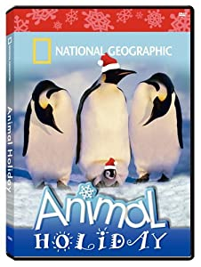 National Geographic - Animal Holiday from National Geographic Video
