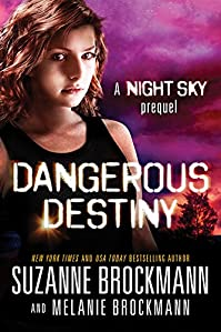 Dangerous Destiny: A Night Sky Novella by Suzanne Brockmann ebook deal