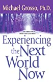 Experiencing the Next World Now by Michael Grosso