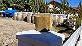 Bung Plug for 58-60 Gallon Wine Barrel