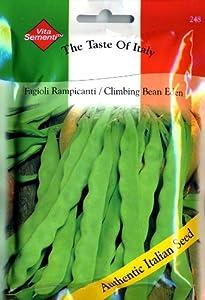 Thompson & Morgan 248 Vita Bean Pole Bean Eden Seed Packet