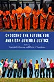 Choosing the Future for American Juvenile Justice (Youth, Crime, and Justice)