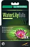 Dennerle 3417 Water Lily Balls 5-Stück