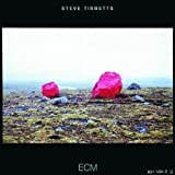 Exploded View by Tibbetts, Steve (2001-05-08)