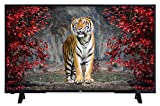 JVC LT-49VF43A 124 cm (49 Zoll) Fernseher (Full HD, Triple Tuner, DVB-T2 H.265/HEVC)