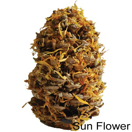 Image of Vitakraft Natural Candy Cone, Sun Flower (B006P45WNK)