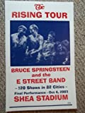 Rons Past and Presest Bruce Springsteen And The East Street Band Playing At Shea Stadium