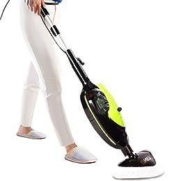 SKG Carpet Cleaner