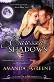 Caressed by Shadows (Rulers of Darkness Book 4)