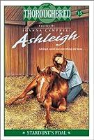 Ashleigh #15: Stardust's Foal