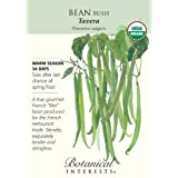 Bean Bush Tavera (French Filet) Certified Organic Seed