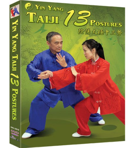 Yin Yang Taiji 13 Postures