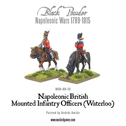 Waterloo British Mounted Infantry Officers