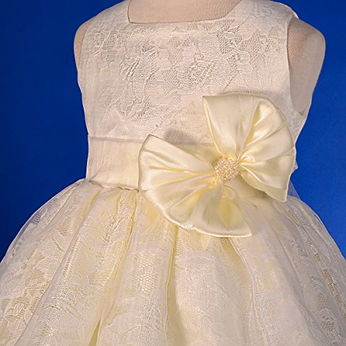 Dressy Daisy Baby Girls Floral Lace Overlay Flower Girl