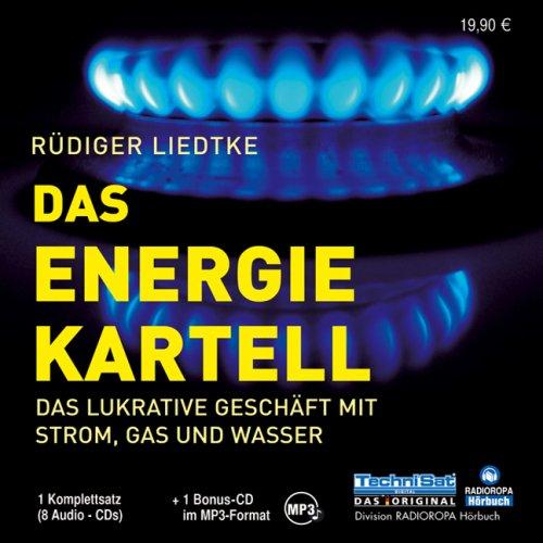 das-energie-kartell-das-geschaft-mit-der-energie-und-wer-dabei-verdient