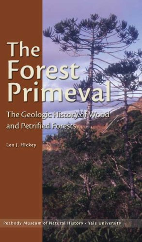 The Forest Primeval: The Geologic History of Wood and Petrified Forests (Yale Peabody Museum Series)