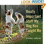 Really Important Stuff My Dog Has Tau...
