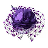 Gothic Dinner Tea Party Feather Fascinator Mini Veil Cocktail Hat - Purple