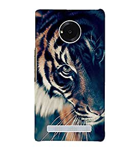 Citydreamz Back Cover For Micromax YU Yuphoria 5010|