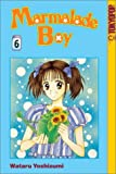 Marmalade Boy, Vol. 6