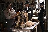 Image de Les Enquêtes de Murdoch - Saison 7 [Blu-ray]