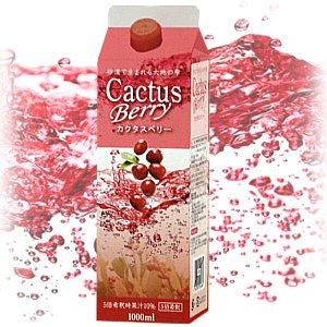 カクタスベリー1000ml 5倍希釈用 保存料・香料不使用