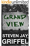 GRAND VIEW (David Grossman Series Book 3)