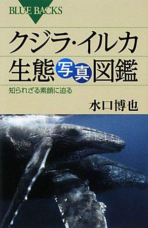 クジラ・イルカ生態写真図鑑 (ブルーバックス)