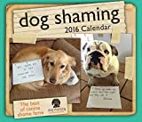img - for Dog Shaming 2016 Day-to-Day Calendar book / textbook / text book
