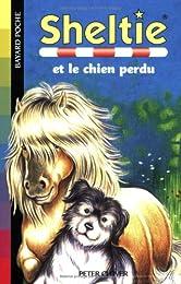 Sheltie, Tome 12 : Sheltie et le chien perdu