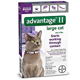 Bayer Advantage II for Large Cats Over 9 lbs  6 Pack