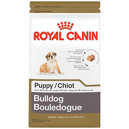 Royal Canin Bulldog Puppy Dry Dog Food 30-lb bag