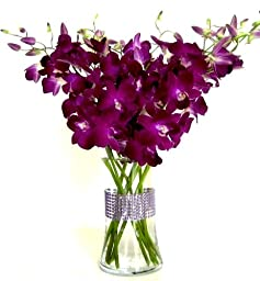 Just Orchids - Deep Purple Dendrobium with Vase