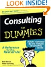 Consulting For Dummies (For Dummies (Lifestyles Paperback))